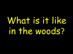 PSED-Woodland-Pictures.ppt