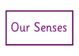 UW-Senses-Posters.pdf