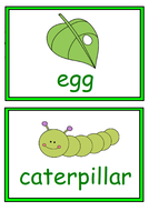 UW-Butterfly-Lifecycle-Cartoon-Picture-Cards.pdf