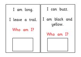 L-Minibeast-Riddles.pdf