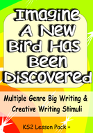 Imagine a New Bird Creative Writing or Big Writing Lesson VCOP + Audience Purpose Genre