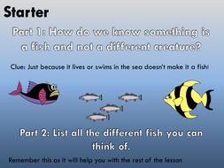 CYO-Fish.pptx