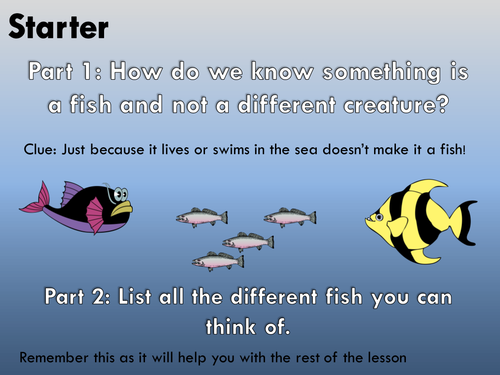 A New Fish Has Been Discovered Creative Writing or Big Writing Lesson VCOP + Audience Purpose Genre