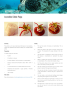Amazing_Polyps_Edible-polyps-from-coral-oceans-7-11-science-4.pdf