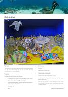Reef_Builders_Reef-in-a-box-from-coral-oceans-7-11-science.pdf