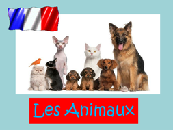 les-animaux-2.ppt