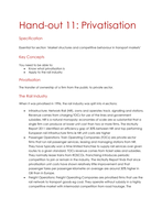 11-Privatisation.docx
