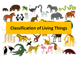 Image result for classification of living things
