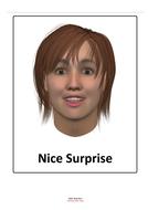 FacePosterNiceSurprise.pdf