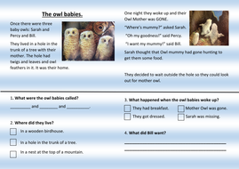 Owl babies reading comprehension ks1 by misscalvert teaching owl babies reading comprehension ks1 ibookread Read Online