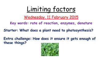 Limiting factors in photosynthesis by zuba102 - Teaching Resources ...