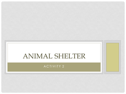 Animal Shelter CAB Activity 2 Guide