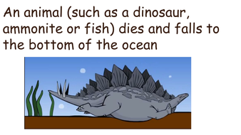How fossils are made KS2 simple