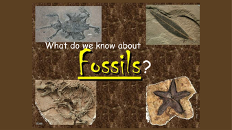 how fossils are made ks2 simple by katherineslessor teaching