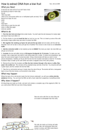 How-to-extract-DNA-from-a-kiwi-fruit---The-Naked-Scientists.pdf