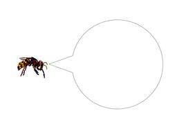92-tbtl-speech-bubble-wasp.pdf