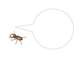 91-tbtl-speech-bubble-stag-beetle.pdf