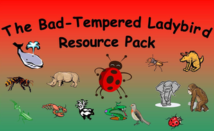 The Bad-Tempered Ladybird Resource Pack