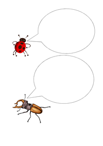 52-tbtl-conversation-tbtl-stag-beetle.pdf