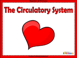The-Circulatory-System.ppt