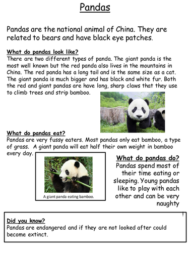 report writing template ks1 - animal non chronological report examples by mrsteer