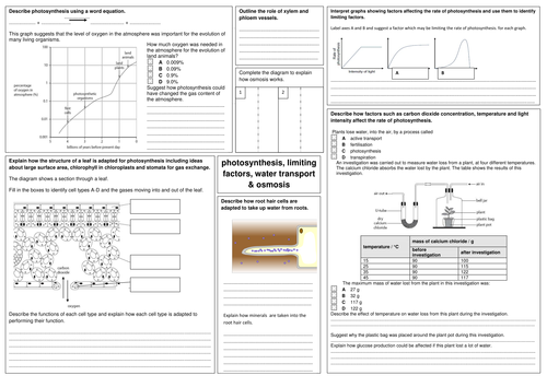 Edexcel Gcse Biology B2 Revision Sheets By Alphagekko Uk