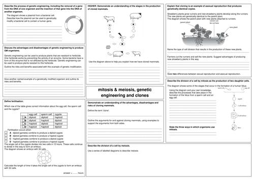 edexcel GCSE biology B2 revision sheets by alphagekko Teaching – Carrying Capacity Worksheet