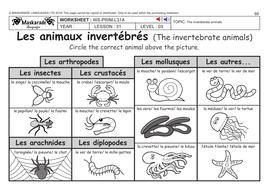 french ks2 level 3 ks3 year 7 vertebrate and invertebrate animals by maskaradelanguages. Black Bedroom Furniture Sets. Home Design Ideas
