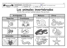 spanish ks2 level 3 ks3 year 7 vertebrate and invertebrate animals by maskaradelanguages. Black Bedroom Furniture Sets. Home Design Ideas