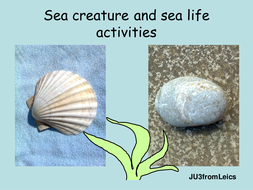 SEA CREATURES and sea life activities. End of term or topic.