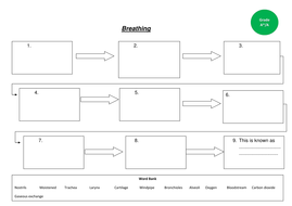 Breathing-flow-map-A.docx
