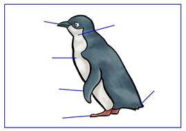 L-Label-a-Penguin---Snowman.pdf