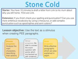 Stone-Cold-L3.ppt