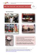 RE-Comparing-Festivals-Chicken-in-the-Kitchen.pdf