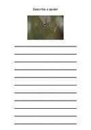 aaaarrgghh-spider-describe-spider.pdf