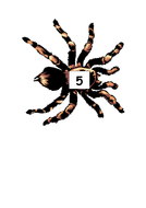 aaaarrgghh-spider-number-5.pdf