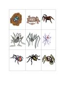 aaaarrgghh-spider-pairs-1.pdf