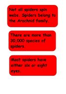 aaaarrgghh-spider-facts-spider-3.pdf