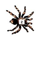 aaaarrgghh-spider-number-2.pdf