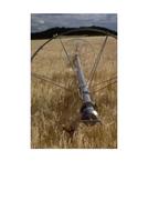 little-red-hen-photos-harvest.pdf