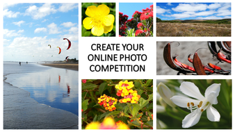 BEST ONLINE PHOTO COMPETITION