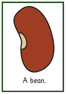 UW-Large-Stages-of-a-Bean-Growing-Cards.pdf