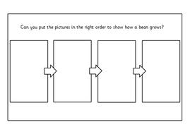 UW-Order-Stages-of-Bean-Growing.pdf
