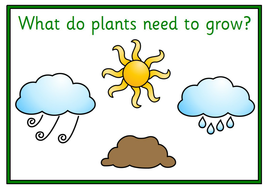 UW-What-Plants-Need-to-Grow-Card.pdf