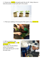 instructions-for-hydroponics-systems.docx