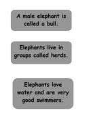 elmer-elephant-facts-2.pdf