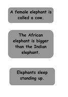 elmer-elephant-facts-3.pdf