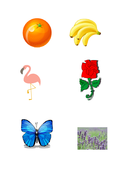 elmer-coloured-objects-pictures.pdf