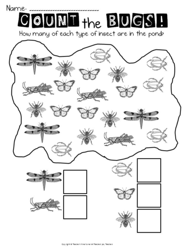 Bugs (minibeasts) maths printables by MMckenna85
