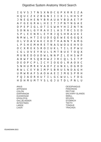 Starters Human Biology Anatomy Word Search by sjakeman
